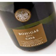 cava-bohigas-4-460x328